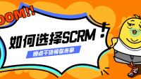看透本质,如何选SCRM供应商?